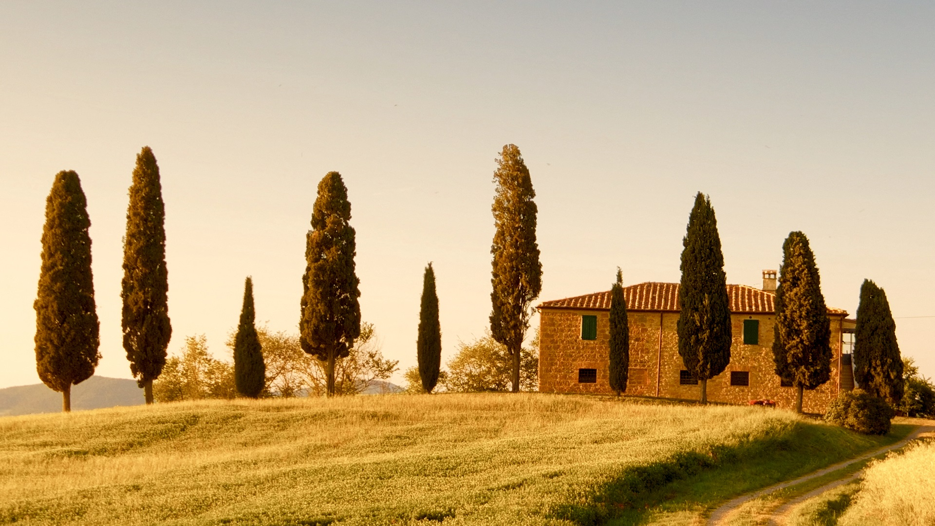 Explore the rustic hilltop town-Pienza engraved in the Italian cypress trees