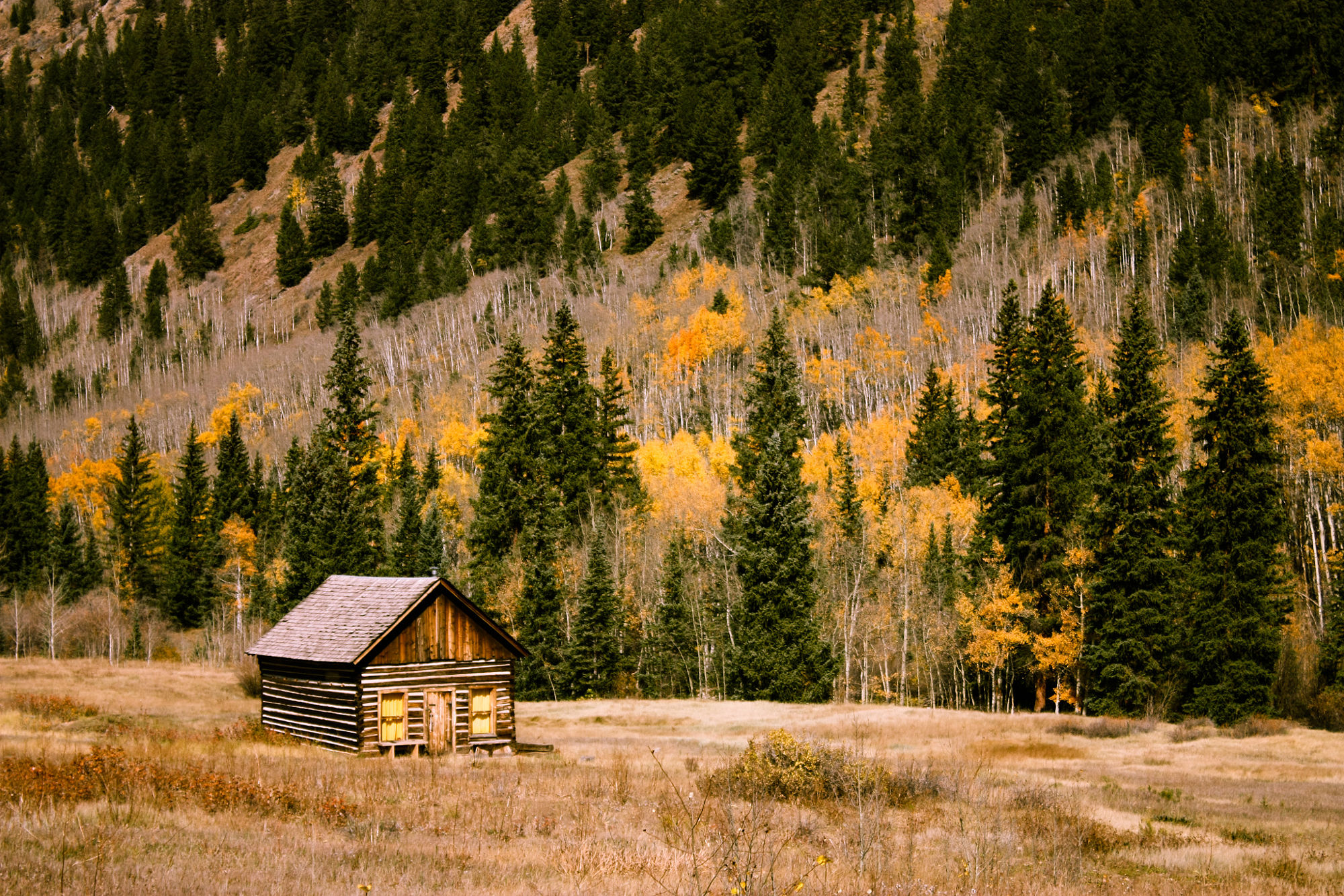 Best Cabin Rental Destinations in the US